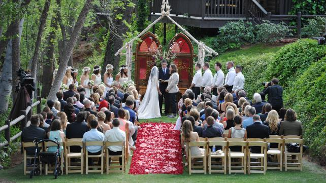 weddingriedaniel