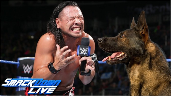 Nakamura kutyatámadás áldozata lett!